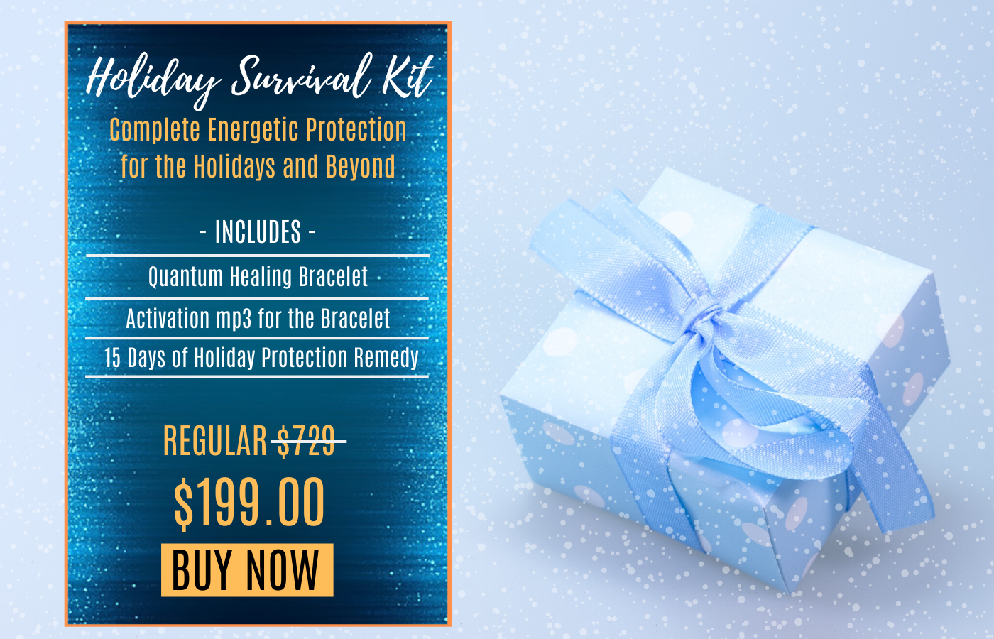 Holiday Protection Package 2