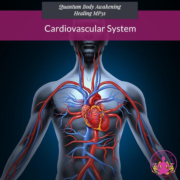 Cardiovascular System 1