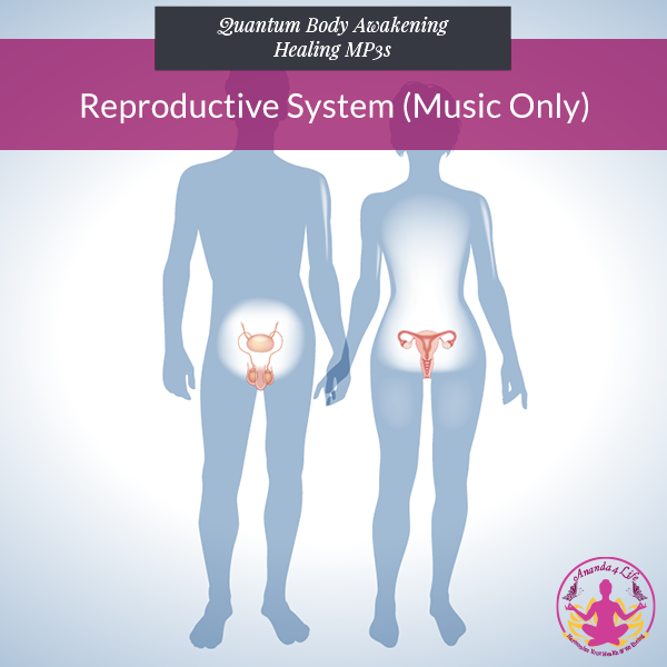 Reproductive System (Music Only) 1