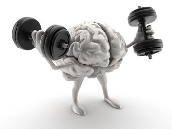 Quantum Brain Mapping 144