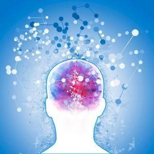 Quantum Brain Mapping 12